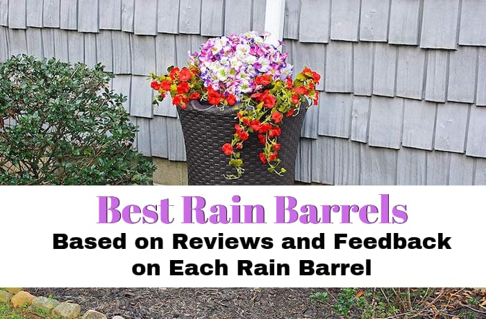 Best Rain Barrel on the Market