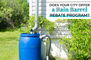 Rain Barrel Rebate Program?